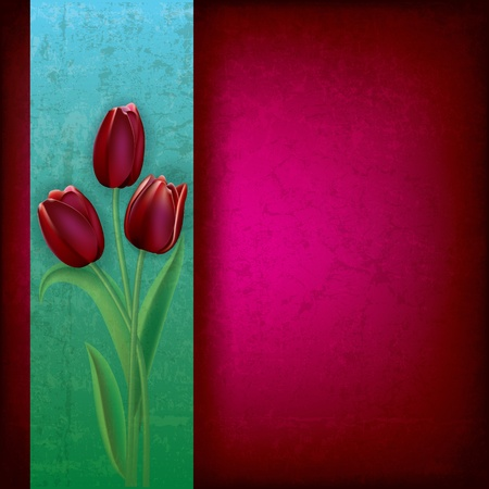 abstract purple grunge background with red tulips