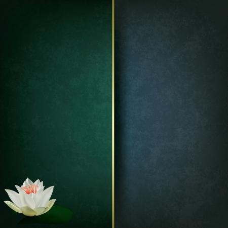 lilia: abstracto fondo oscuro del grunge con loto blanco