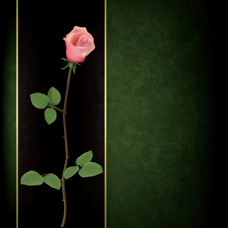abstract grunge green background with rose on black Stock Vector - 16352380
