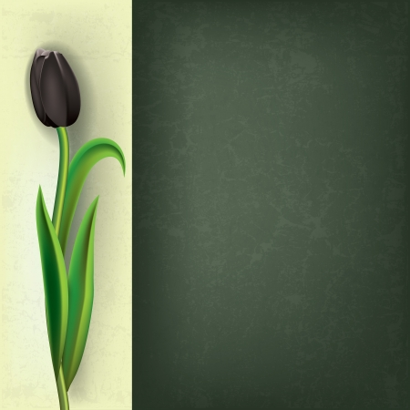 abstract grunge floral background with black tulip Vector