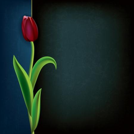 tulipe rouge: abstrait grunge floral background avec la tulipe rouge sur fond noir Illustration