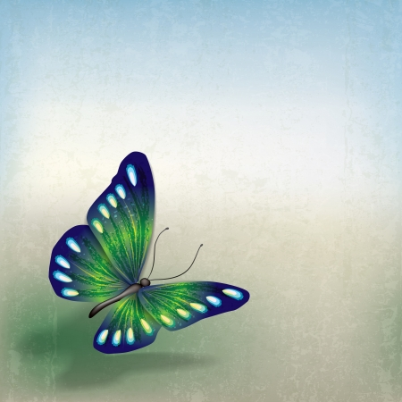 monarch: abstract grunge background with butterfly on gtay Illustration