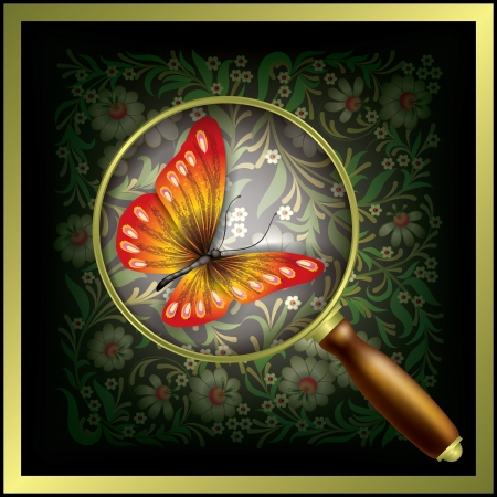 abstract floral background with Magnifying glass and butterfly Stock Vector - 18724417