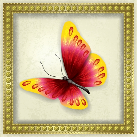 abstract grunge background with red butterfly and frame Stock Vector - 18724416