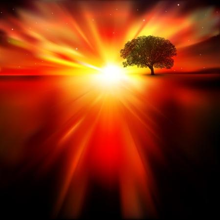 abstrait nature avec étoiles d'arbres et de lever
