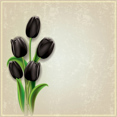 abstract floral grunge background with black tulips on gray Vector