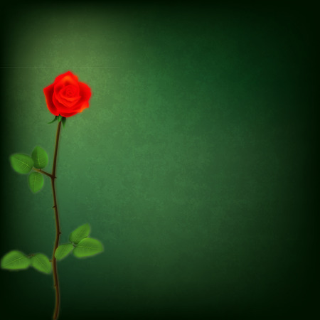 rose stem: abstract grunge background with red rose on green