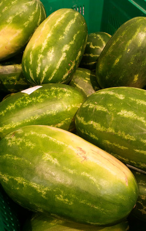 Watermelons of various shapes inside a large container Imagens