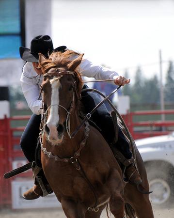country western: Cowboy raiding