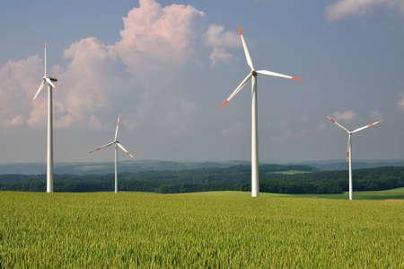 wheatfield: wind turbines in a wheatfield