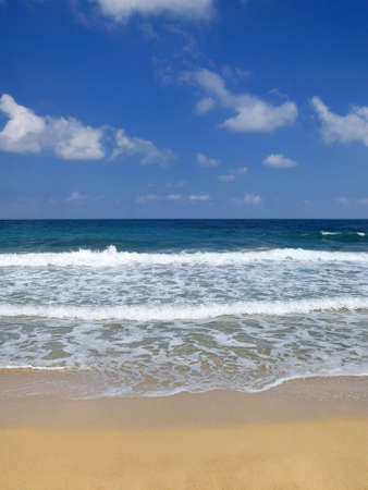 a summer day on the beach