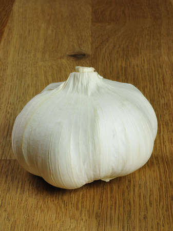 close up of fresh garlic