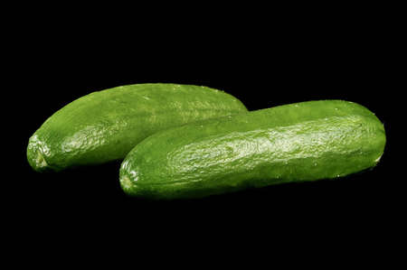 aromatic cucumbers are freshly harvested