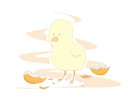 Cute Chick, a hand drawn vector illustration of a cute, newly-hatched chick for your project needs. some objects are on their own separate groups for easy editing.