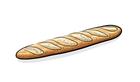 steamy: Baguette, a hand drawn vector illustration of a steamy Baguette bread.