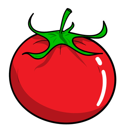 broth: Tomato, a hand drawn vector illustration of a fresh tomato, isolated on a white background editable.