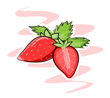 fruit juice: Strawberries, A hand drawn vector illustration of strawberries, strawberries, white outline and background are on their own separate objects for easy editing. Illustration