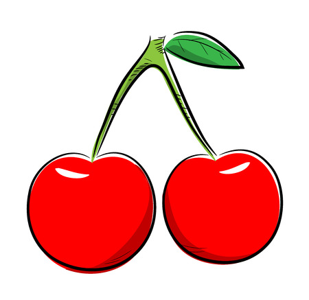 fresh fruit: Cherries, a hand drawn vector illustration of two cherries, isolated on a white background. Illustration