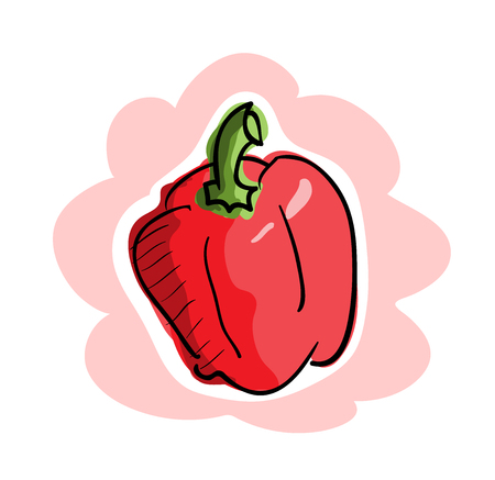 bell pepper: Fresh Bell Pepper, a hand drawn vector illustration of a fresh bell pepper, isolated on a simple background editable.