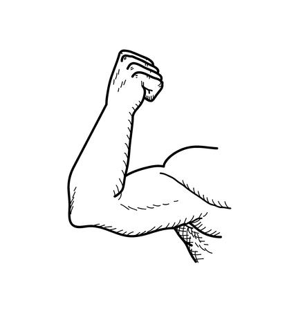 Bicipite, una mano disegnato illustrazione vettoriale scarabocchio di un grande forte bicipite di un bodybuilder.