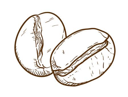 Grains de café Doodle, un vecteur dessiné à la main doodle illustration de grains de café. Vecteurs