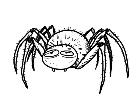 tarantula: Spider Doodle, a hand drawn vector doodle illustration of a spidertarantula.