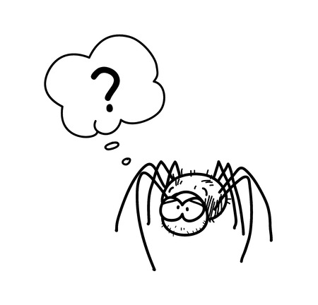 arachnid: Spider Cartoon, a hand drawn vector doodle illustration of a spider with question mark.