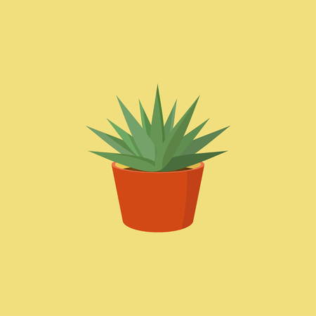 plant pot: Vector succulent plant in orange clay pot isolated on yellow background