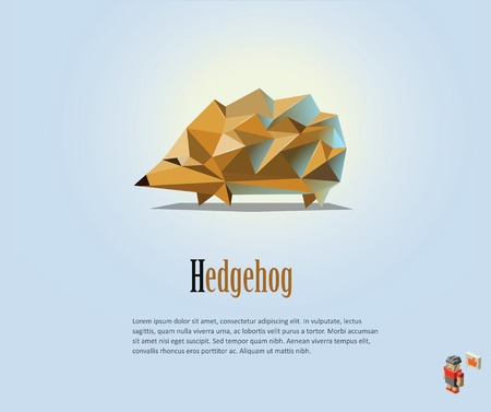 scratchy: Vector polygonal illustration of Hedgehog, modern low poly animals icon