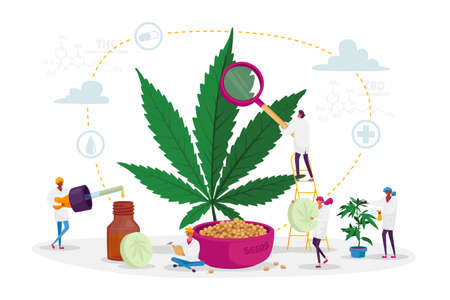Scientist Characters Growing Medical Cannabis and Preparing Homeopathic Medicine of Marijuana. Cannabis for Personal Use
