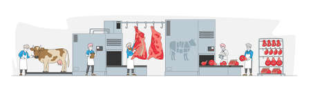 Characters Work on Meat Factory Processing Line from Alive Cow, Carcass Cutting to Weighing and Filling Shelf with Beef