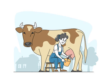Milkmaid Woman in Uniform Sitting on Chair and Milking Cow into Bucket. Milk and Dairy Farmer Agriculture Production