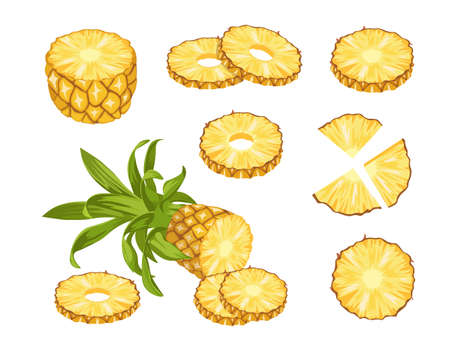 Pineapple Tropical Fruits, Whole, Half and Sliced Natural Fresh Plant. Exotic Juicy Food. Ripe Healthy Organic Product Vettoriali