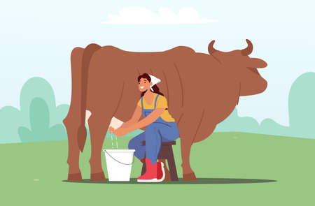 Young Milkmaid Woman in Uniform Sitting on Chair and Milking Cow into Bucket. Milk and Dairy Farmer Agriculture Products