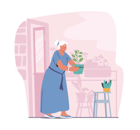 Senior Woman Gardening Hobby. Aged Grey Haired Female Character Caring of Home Plants in Pots. Old LadyCarry Flower Pot 向量圖像
