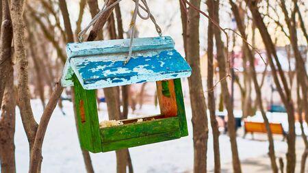 bird feeder in the park