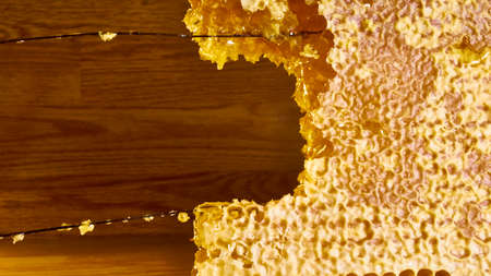 bee honey in hexagonal honeycombs filled with Golden nectar. Honeycomb summer composition, consisting of drops of natural honey, dripping on the wax frame of the bee.