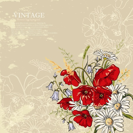 Elegance background with poppy and camomile flowers  in vintage style 일러스트