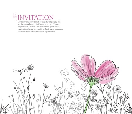 floral horisontal border for invitation on white Vector