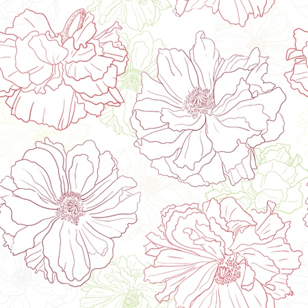 poppy flower: Hand drawn floral wallpaper with poppy flowers