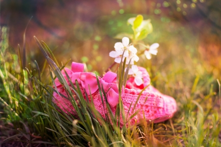 bright pink baby shoes on the green grass Stock Photo