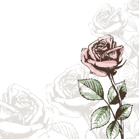 Weinlese-Rosen Hintergrund