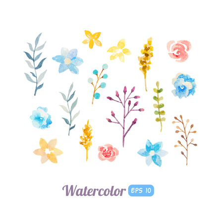 Set of watercolor floral elements for decoration