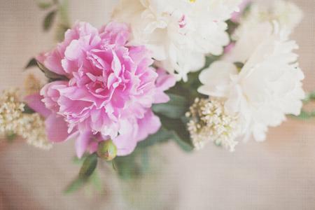 Peony flowers vintage card