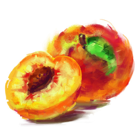 vector isolated peach with a slice - drawn by oil paints Vector