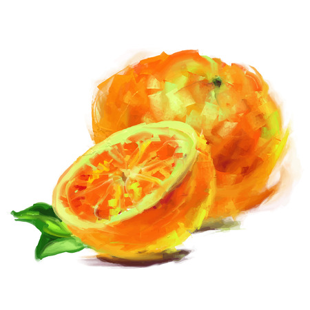 vector isolated orange with a slice - drawn by oil paints Illustration