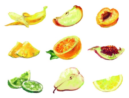 set of isolated slices of fruit - drawn by oil paints Vector