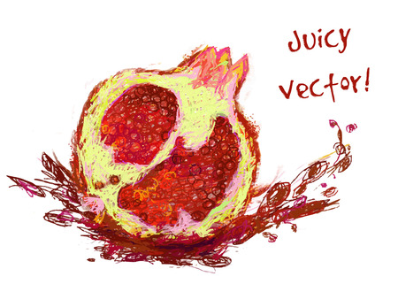 vector isolated garnet with a slice - drawn by colored pencils Vector