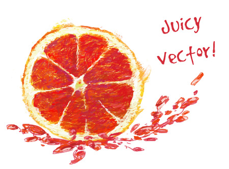 grapefruit juice: vector isolated slice of grapefruit with juice - drawn by colored pencils