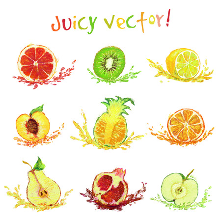 vector set of isolated fruits with a slice - drawn by colored pencils Vector